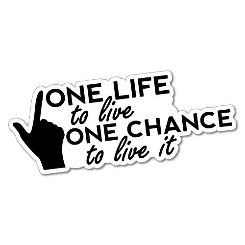ONE LIFE ONE CHANCE LIVE IT Sticker Decal 4x4 4WD Funny