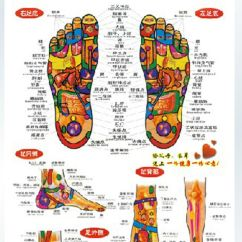 Foot Massage Therapy Diagram Cat Digestive System Chinese Chart Reflective Zones Reflexology Wall Poster | Ebay