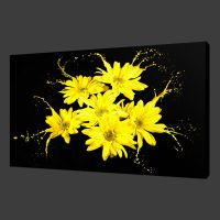 YELLOW FLOWERS SPLASH CANVAS WALL ART PICTURES PRINTS 20 x ...