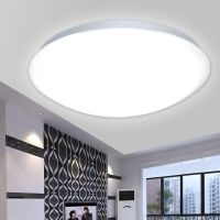Modern LED Lighting Light Fixtures Ceiling Lights Lamp