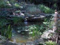 backyard pond kits - 28 images - backyard pond kits ...