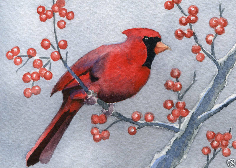 CARDINAL Bird Painting Giclee 5 X 7 Art Print On WC Paper