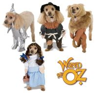 Pet Dog Cat Wizard of Oz Dorothy Tinman Scarecrow Fancy