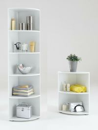 """Big Eck & Wee Eck"" Bathroom / Kitchen Corner Shelf. White ..."