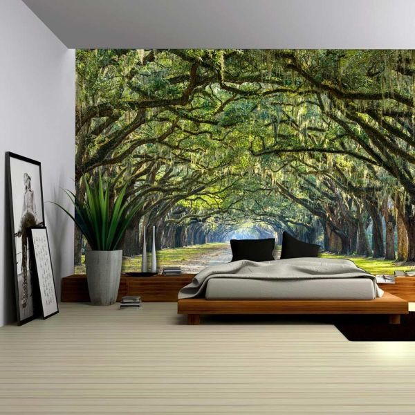 Removable Wall Murals Forest