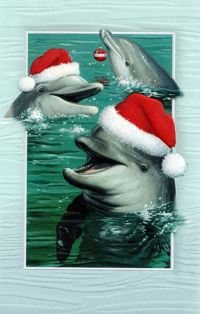 16 Boxed Embossed Christmas Cards Bottlenose Dolphin Ocean