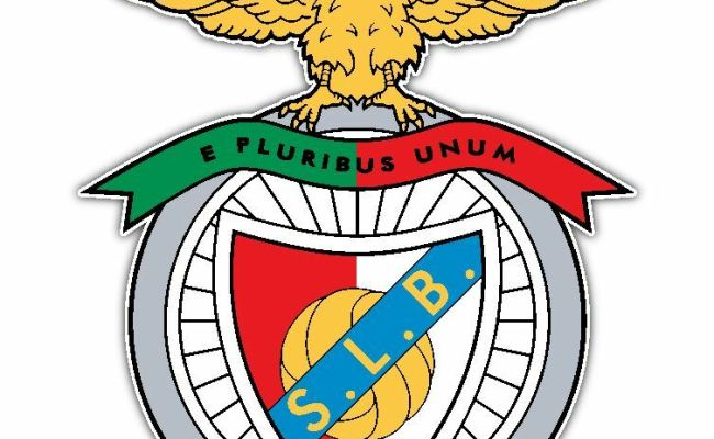 S L Benfica Fc Portugal Football Soccer Car Bumper