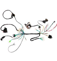 details about upgraded 50 70 90 110cc wire harness assembly wiring atv electric quad coolster [ 1000 x 1000 Pixel ]