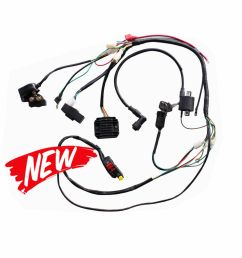 details about full wiring harness for 250cc 200cc zongshen pit bike hummer atomik ducar lifan [ 1000 x 1000 Pixel ]