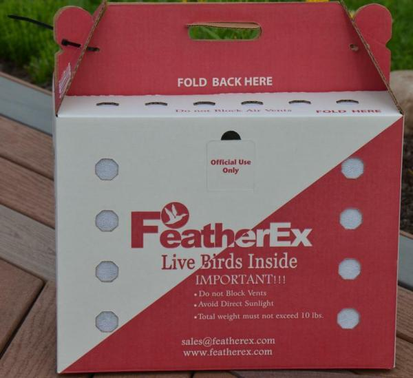 10 Pack FeatherEx Live Bird Shipping Boxes for Chicken
