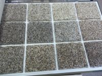 WALL TO WALL CARPET - STAIN RESISTANT CARPET - WE CAN SHIP ...
