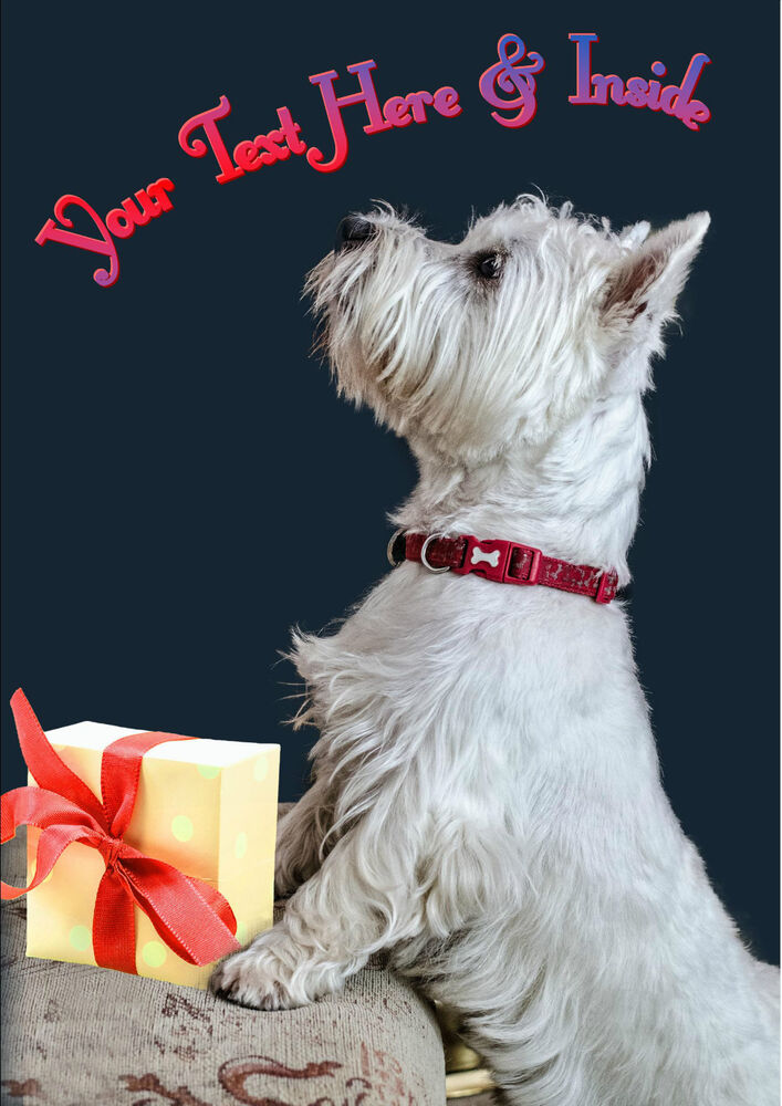 PERSONALISED WESTIE WEST HIGHLAND TERRIER DOG BIRTHDAY ANY