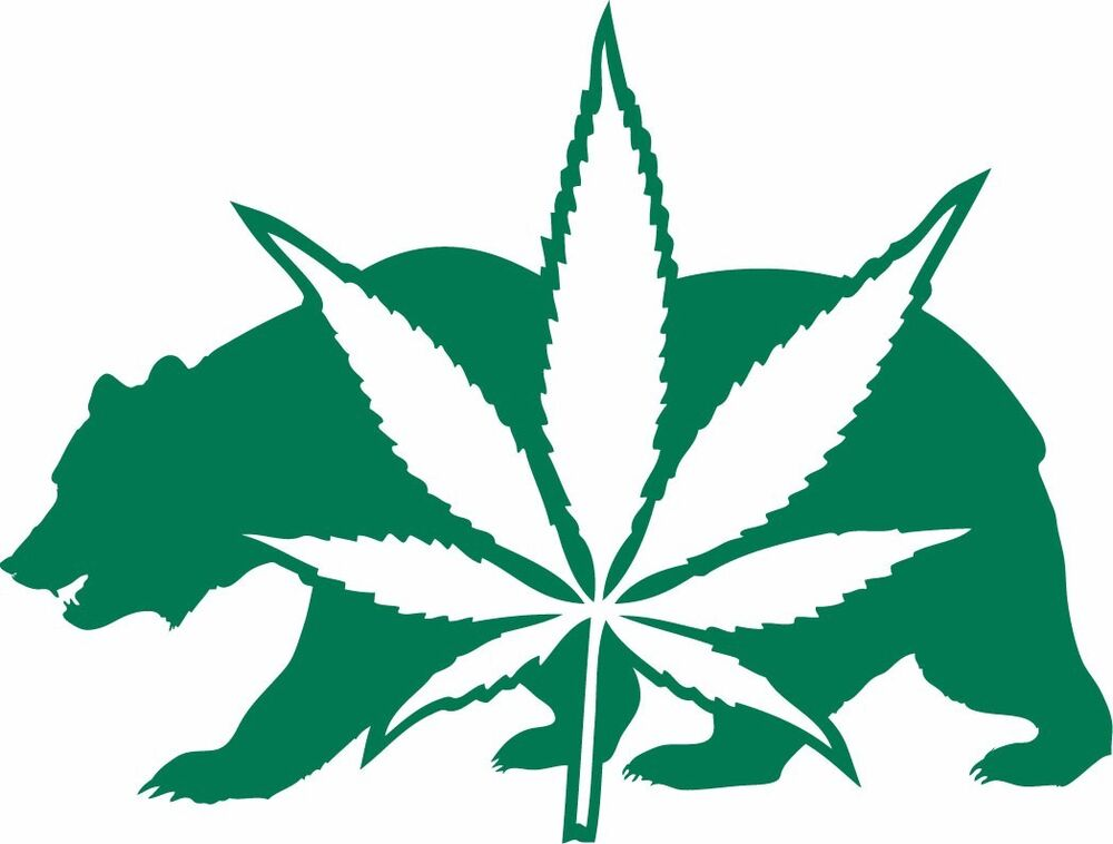 Download A weed leaf California bear silhouette sticker or decal ...