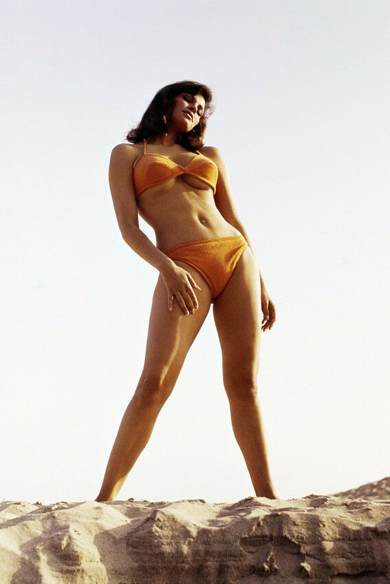 RAQUEL WELCH 24X36 POSTER ICONIC SEXY PIN UP STANDING ON
