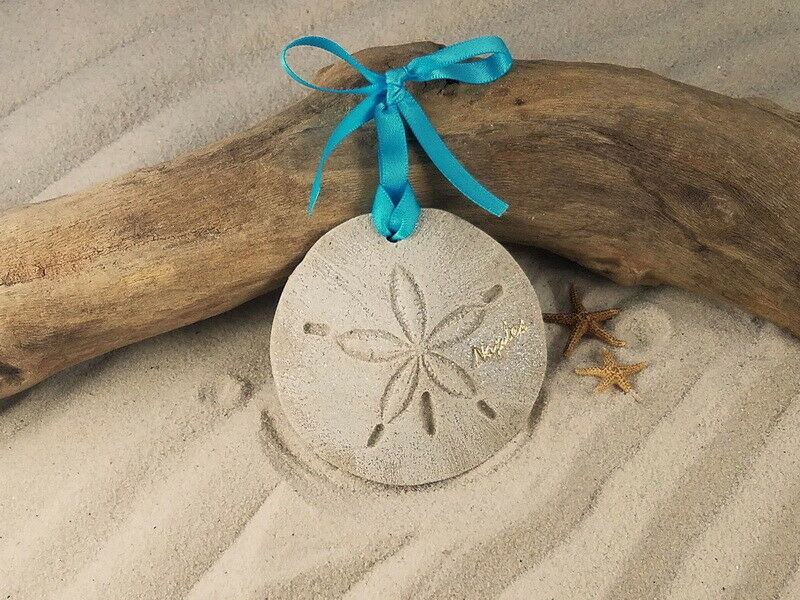 NAPLES SAND DOLLAR CHRISTMAS ORNAMENT TROPICAL COASTAL EBay