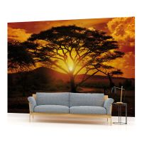 African Sunset Landscape PHOTO WALLPAPER WALL MURAL ROOM ...