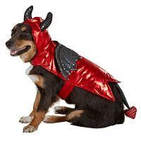 Devil Halloween Dog Pet Costume Large (New with Tags) | eBay