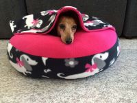NEW Dachshund Small Dog Bed Snuggle Bed for Burrowing Dog ...