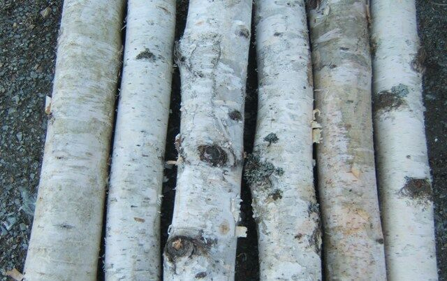 White Birch Fireplace Logs Nice Bark, Fireplace,hearth