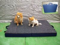 Fold Up Orthopedic Travel Dog Bed