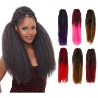 Ombre Femi Collection Kinky Twist Braiding Hair 100%
