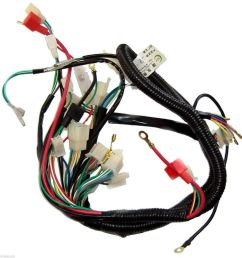 details about wire loom wiring harness wireloom 50cc 110cc 125cc atv quad bike buggy go kart [ 1000 x 1000 Pixel ]