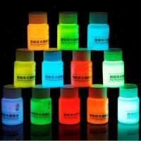 10ml High quality 12 Colors Acrylic Glow In The Dark Paint ...