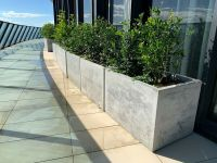 Concrete planter box, large polished patio trough, outdoor
