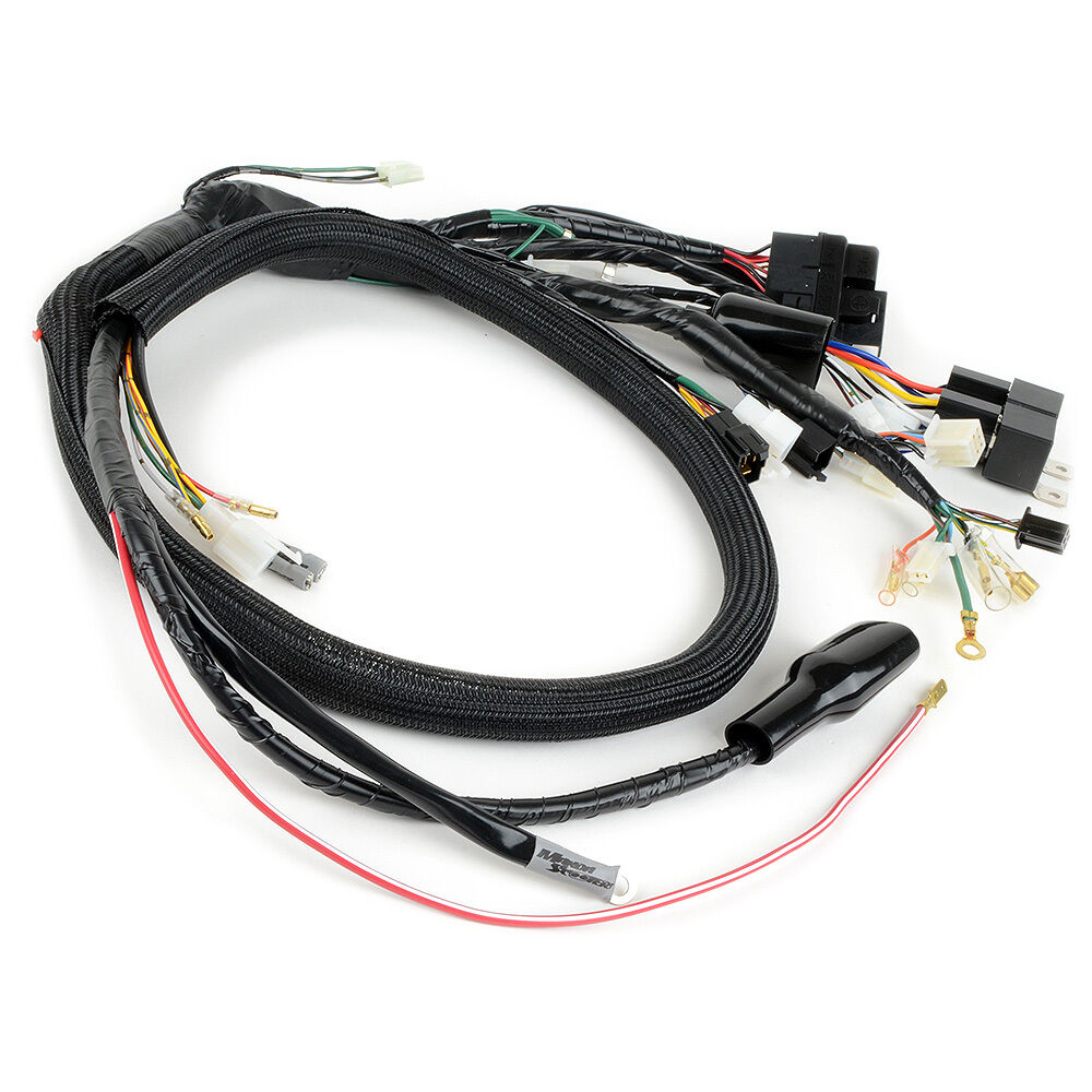 hight resolution of details about honda ruckus to gy6 conversion wiring harness by makoa plug and play