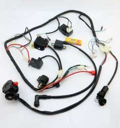 details about full atv wiring harness loom ignition coil cdi 150cc 200cc 250cc 300cc zongshen [ 1000 x 1000 Pixel ]