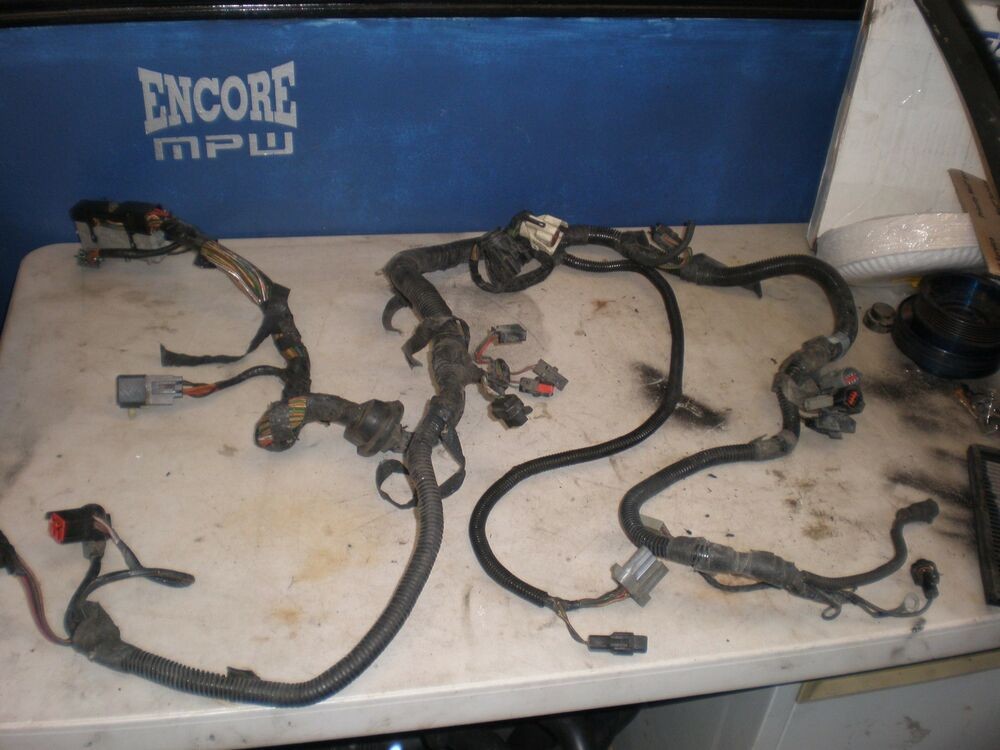 Ford 5 0 Wiring Harness