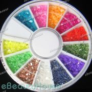 colors crushed shell powder