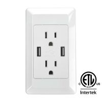 Dual USB Port Electric Wall Charger Power Outlet Panel ...