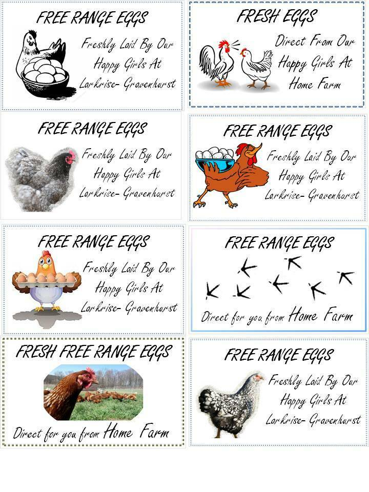 24 x SMALL CUSTOMISABLE CHICKEN HEN EGG BOX LABELS 70 x