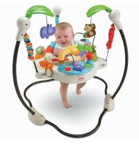NEW Fisher Price Luv U Zoo Jumperoo Baby Jumper Walker ...