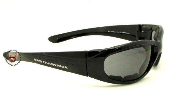HARLEY DAVIDSON FOAM PADDED SUN GLASSES RIDING NIP