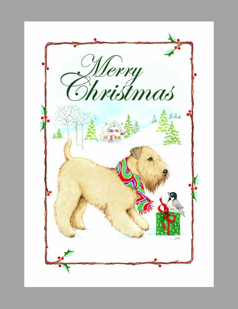Soft Coated Wheaten Terrier Dog Christmas Cards Box Of 16