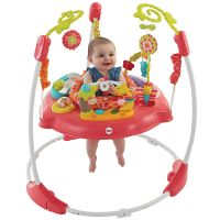 Fisher Price Pink Petals Jumperoo, 360 Degree Baby Bouncer ...