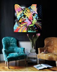 Colour Cat Animals Stretched Canvas Print Framed Wall Art ...