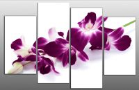 LARGE PLUM PURPLE ORCHIDS ON WHITE CANVAS PICTURE WALL ART ...