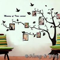 Photo Picture Tree Frame Set Wall Art Stickers Vinyl