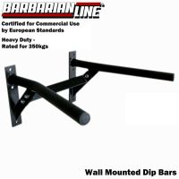 BARBARIAN Wall Mounted Commercial Dip Bars BB-9017 Station ...