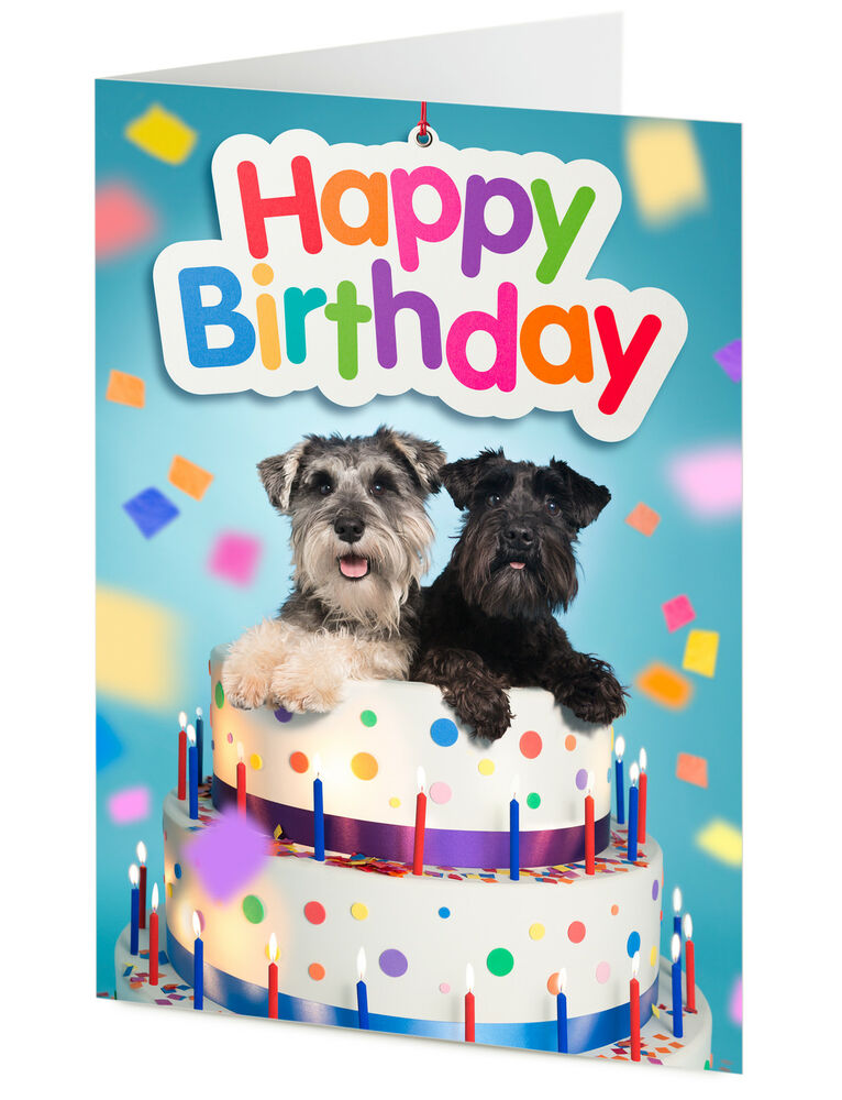HAPPY BIRTHDAY CARD Two Funny Miniature Schnauzer Dogs In