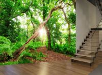 Top 28+ - Nature Murals For Walls - nature wall mural ...