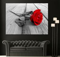 Wall Art Canvas Print Black White Red Rose Modern Home