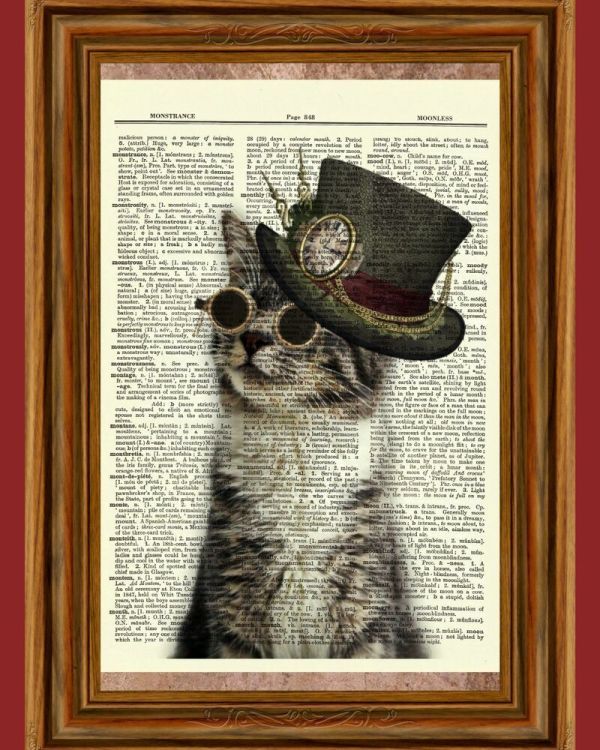 Steampunk Cat Glasses Hat Tabby Dictionary Curious Art