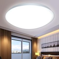 White Acrylic Shade Ceiling Lamp Flush Mount Pendant Light ...