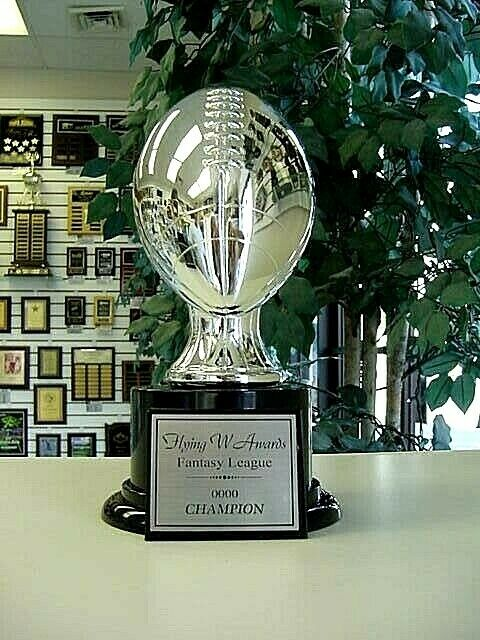 AWESOME FANTASY FOOTBALL TROPHY AWARD SILVER RESIN NEW EBay