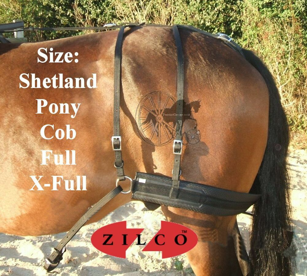 hight resolution of carriage driving harness breeching set zilco tedex shetland pony cob full ebay