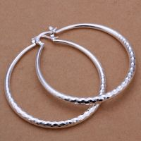 925 Sterling Silver Hoop Pierced Earrings L2